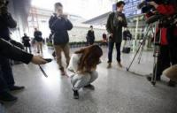AFP coordinating with Malaysia, Vietnam to find missing plane